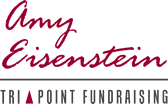 Amy Eisenstein - Logo